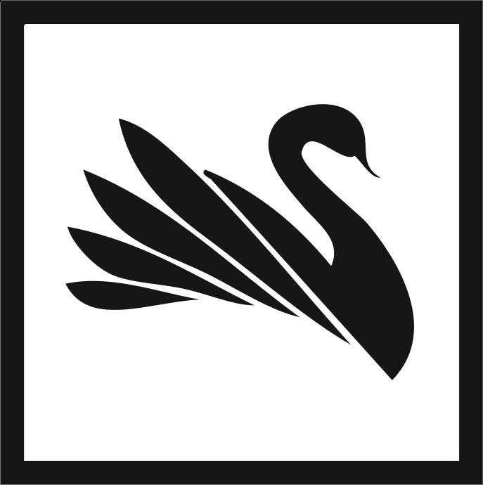 Black Swan Cam